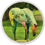 A Horse Is A Horse Round Beach Towel