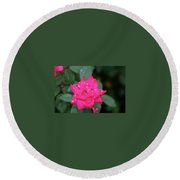 Round Beach Towel featuring the photograph A Lite Drizzel by John Glass