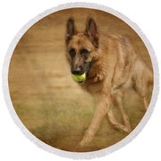 Round Beach Towel featuring the photograph A Little Playtime - German Shepherd Dog by Angie Tirado