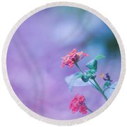 A Little Softness, A Little Color - Macro Flowers Round Beach Towel