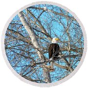 Round Beach Towel featuring the photograph A Majestic Bald Eagle by Will Borden