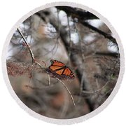A Monarch For Granny Round Beach Towel