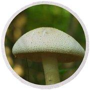 A Mushroom Round Beach Towel