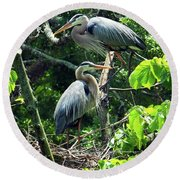 A Nesting Pair Of Great Blue Herons Round Beach Towel