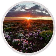 Round Beach Towel featuring the photograph A Nuttalls Linanthastrum Morning by Leland D Howard