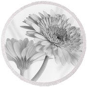 A Pair Of Daisies Round Beach Towel by David and Carol Kelly