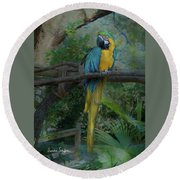 A Parrot's Life Round Beach Towel