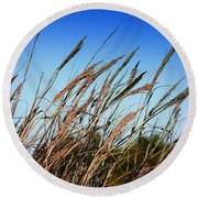 Round Beach Towel featuring the photograph A Picture Worth A Thousand Words by Debra Forand