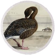 A Pink Footed Goose Round Beach Towel