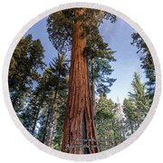 A Poem Lovely As A Tree.   Round Beach Towel