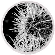 A Prickly Subject Round Beach Towel
