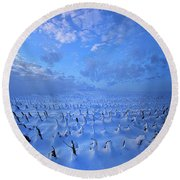 Round Beach Towel featuring the photograph A Quiet Light Purely Seen by Phil Koch