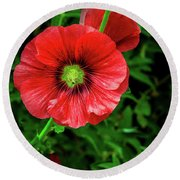 A Red Hollyhock Round Beach Towel