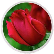 A Red, Red Rose Round Beach Towel