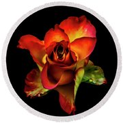 A Red Rose On Black Round Beach Towel