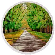 A Road Through Autumn Round Beach Towel by Wallaroo Images