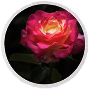 Round Beach Towel featuring the photograph A Rose For Love by Ed Clark
