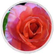 A Rose In The Spotlight Round Beach Towel