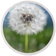 A Single Dandelion Seed Pod Round Beach Towel