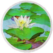 A Single Water Lily Blossom Round Beach Towel