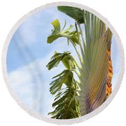 Round Beach Towel featuring the photograph A Slice Of Nature by Ana Mireles