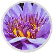 A Sliken Purple Water Lily Round Beach Towel