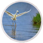 A Snowy Egret Dip-fishing Round Beach Towel by Rick Berk