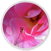 A Spider And A Rose Round Beach Towel