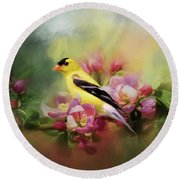 A Splash Of Joy Bird Art Round Beach Towel