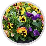 A Spread Of Pansies Round Beach Towel