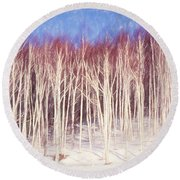 A Stand Of White Birch Trees In Winter. Round Beach Towel