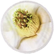 A Strong Southern Accent Round Beach Towel by JC Findley