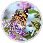 Round Beach Towel featuring the photograph A Summer Lady - Painted Lady Butterfly by Kerri Farley