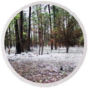 Round Beach Towel featuring the photograph A Summers Snow by Natalie Ortiz