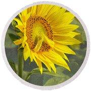 A Sunflower's Prayer Round Beach Towel