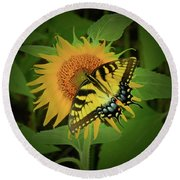 A Swallowtail Butterfly Round Beach Towel by Scott Cameron
