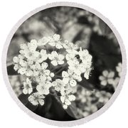A Thousand Blossoms In Sepia 3x4 Flipped Round Beach Towel