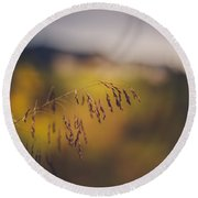 Round Beach Towel featuring the photograph A Time To Be by Shane Holsclaw