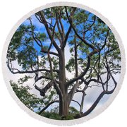 Round Beach Towel featuring the photograph A Tree In Paradise by DJ Florek