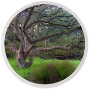 A Tree In The Park  Round Beach Towel