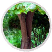 Round Beach Towel featuring the photograph A Tree Lovelier Than A Poem by Madeline Ellis