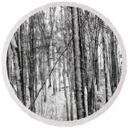 A Tree's View In Winter Round Beach Towel