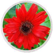 Round Beach Towel featuring the photograph A True Red by Sandi OReilly