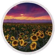 A Vivid Colorado Sunflower Sunset Round Beach Towel