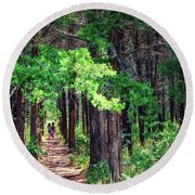 A Walk Into The Forest Round Beach Towel