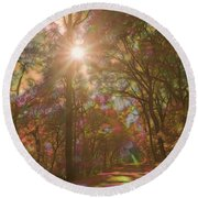 A Walk Through The Rainbow Forest Round Beach Towel