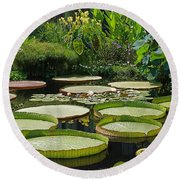 Round Beach Towel featuring the photograph A Water Garden by Byron Varvarigos