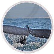 A Whale Of A Tale Round Beach Towel