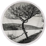 A Winter Tree Round Beach Towel