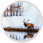 A Winter Wade Round Beach Towel